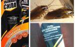 علاج ضرر قوة من الصراصير