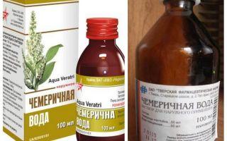 المياه Chemerichnaya من القمل وطريقة القمل من التطبيق