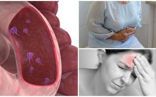 كيفية تحديد وجود الجيارديا في جسم الإنسان