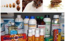 استعراض العلاجات الأكثر فعالية للحشرات المحلية
