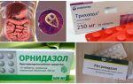 أفضل الأدوية لعلاج الجيارديا في البالغين