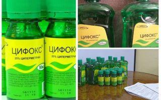 Cyclox علاج البق