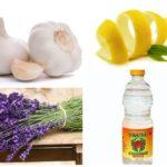 العلاجات الشعبية لعطر الحبوب -1