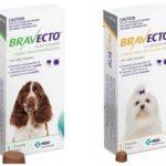 أقراص Bravecto
