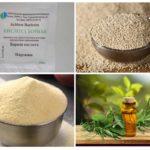 العلاجات المنزلية للنمل