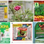المواد الكيميائية السامة لحماية النبات