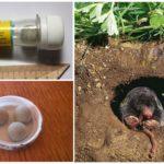 Tablets Alphos Mole + from moles