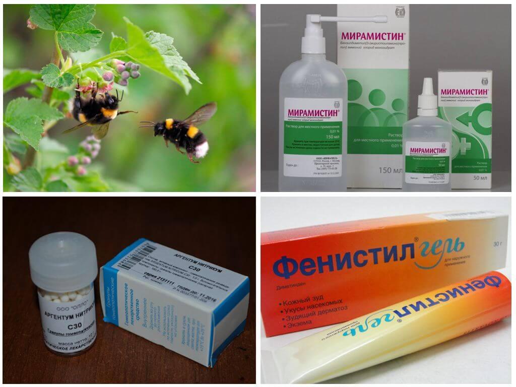 علاج لدغة الحشرات