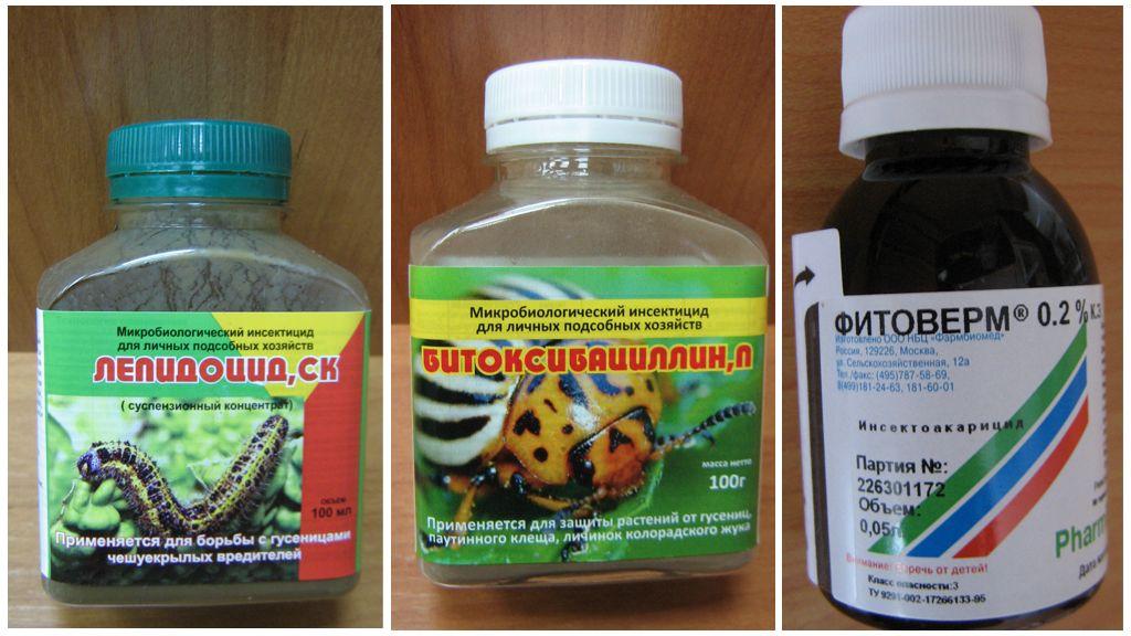 العوامل البيولوجية ضد اليرقات