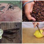 طرق طارد الحشرات