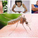 عواقب لدغة البعوض الملاريا
